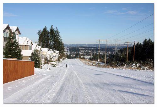 Sunny-snow-day