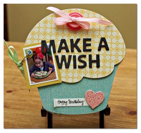Make-a-wish-cover
