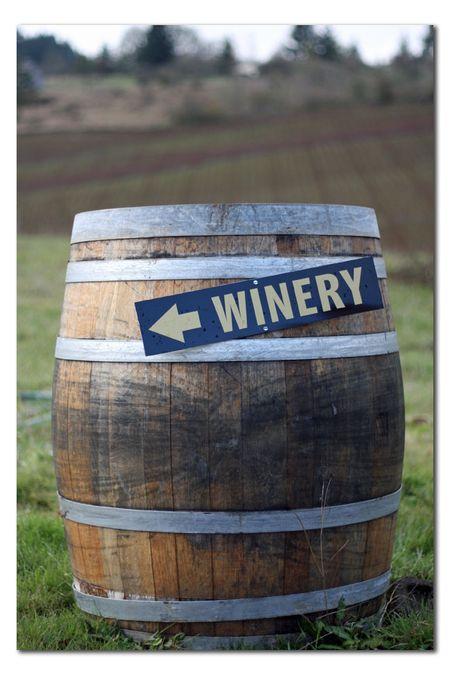 Winery-01